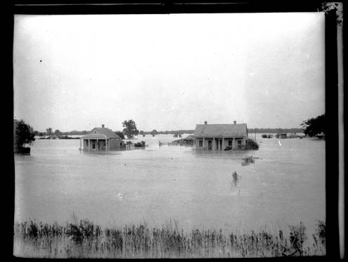 Flooding in Violet, 1922. Source: Louisiana Digital Library