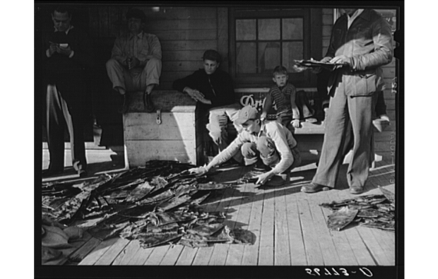 Selling and trading fur in Delacroix, 1941. Source: Library of Congress