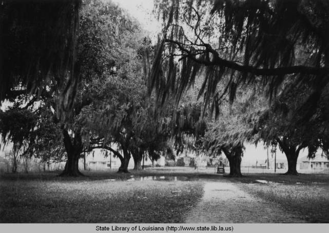 Pakenham Oaks, 1920s. Source: Louisiana Digital Library