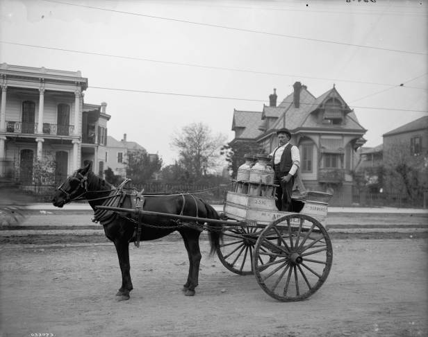 ca. 1905 - Milk Cart